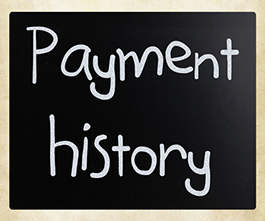 credit report and payment history