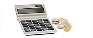 Surplus Income Calculator